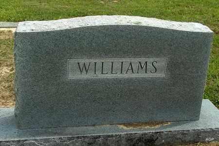 WILLIAMS, FAMILY MARKER - Hempstead County, Arkansas   FAMILY MARKER WILLIAMS - Arkansas Gravestone Photos