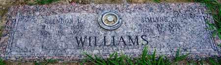WILLIAMS, JIMLYNN C - Hempstead County, Arkansas | JIMLYNN C WILLIAMS - Arkansas Gravestone Photos