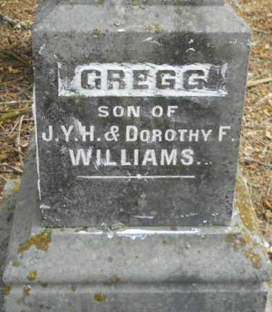 WILLIAMS, GREGG - Hempstead County, Arkansas | GREGG WILLIAMS - Arkansas Gravestone Photos