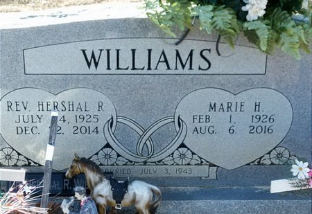 WILLIAMS, HERSHAL R. - Hempstead County, Arkansas | HERSHAL R. WILLIAMS - Arkansas Gravestone Photos