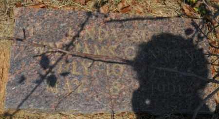 WILLIAMS, LINDA SUE - Hempstead County, Arkansas | LINDA SUE WILLIAMS - Arkansas Gravestone Photos