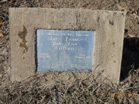 WILLIAMS, MARY LOUISE - Hempstead County, Arkansas   MARY LOUISE WILLIAMS - Arkansas Gravestone Photos