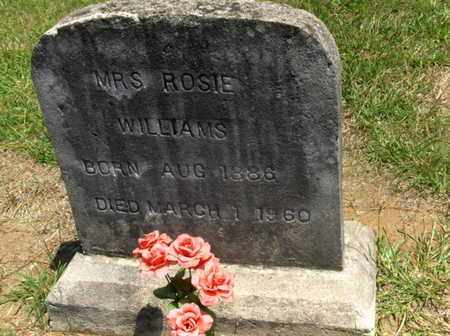 WILLIAMS, ROSIE - Hempstead County, Arkansas | ROSIE WILLIAMS - Arkansas Gravestone Photos