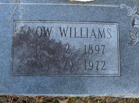 WILLIAMS, SNOW (CLOSE UP) - Hempstead County, Arkansas   SNOW (CLOSE UP) WILLIAMS - Arkansas Gravestone Photos