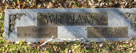 WILLIAMS, SAM - Hempstead County, Arkansas | SAM WILLIAMS - Arkansas Gravestone Photos