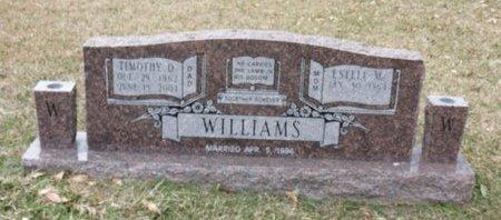 WILLIAMS, TIMOTHY D. - Hempstead County, Arkansas   TIMOTHY D. WILLIAMS - Arkansas Gravestone Photos