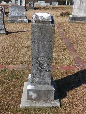 WILLIAMS, T. F. - Hempstead County, Arkansas   T. F. WILLIAMS - Arkansas Gravestone Photos