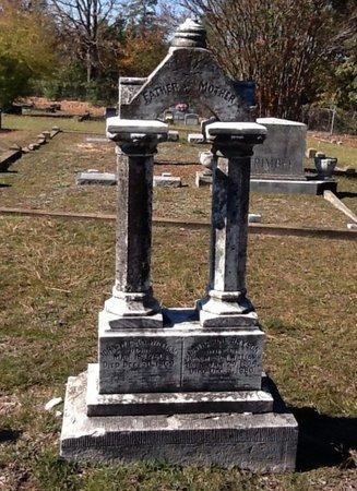 WILLIAMS, CATHARINE - Hempstead County, Arkansas | CATHARINE WILLIAMS - Arkansas Gravestone Photos