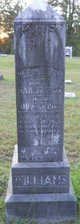 WILLIAMS, W F - Hempstead County, Arkansas   W F WILLIAMS - Arkansas Gravestone Photos