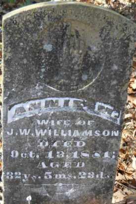 WILLIAMSON, ANNIE M - Hempstead County, Arkansas | ANNIE M WILLIAMSON - Arkansas Gravestone Photos