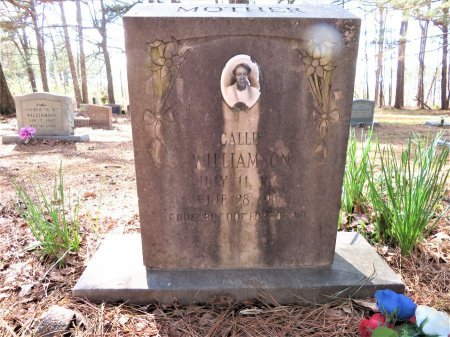 WILLIAMSON, CALLIE - Hempstead County, Arkansas   CALLIE WILLIAMSON - Arkansas Gravestone Photos