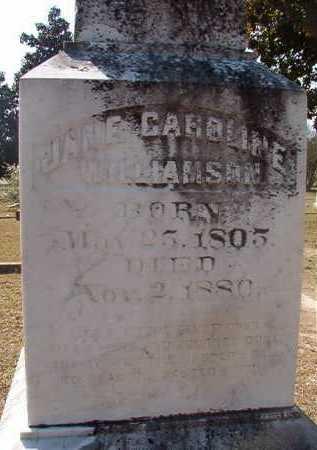 WILLIAMSON, JANE CAROLINE (CLOSEUP) - Hempstead County, Arkansas   JANE CAROLINE (CLOSEUP) WILLIAMSON - Arkansas Gravestone Photos