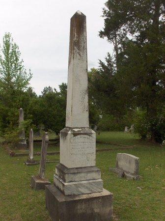 WILLIAMSON, JANE CAROLINE - Hempstead County, Arkansas | JANE CAROLINE WILLIAMSON - Arkansas Gravestone Photos