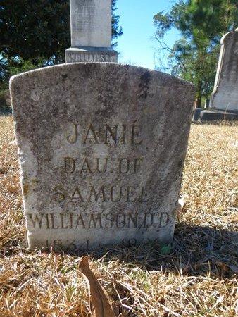 WILLIAMSON, JANIE - Hempstead County, Arkansas | JANIE WILLIAMSON - Arkansas Gravestone Photos