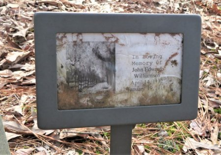 WILLIAMSON, JOHN EDWARD - Hempstead County, Arkansas   JOHN EDWARD WILLIAMSON - Arkansas Gravestone Photos