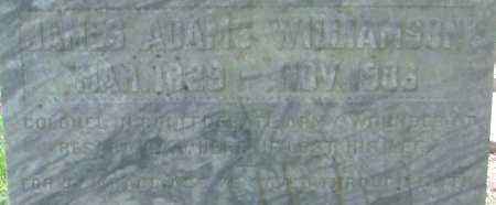 WILLIAMSON, JAMES ADAMS - Hempstead County, Arkansas   JAMES ADAMS WILLIAMSON - Arkansas Gravestone Photos