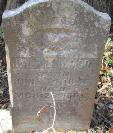 WILLIAMSON, J. W. - Hempstead County, Arkansas | J. W. WILLIAMSON - Arkansas Gravestone Photos