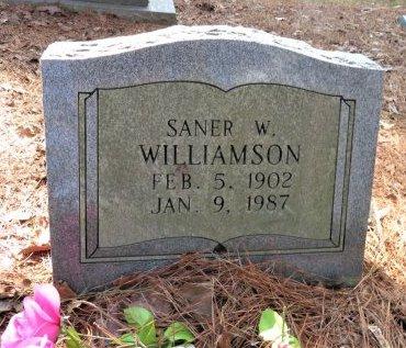 WILLIAMSON, SANER W. - Hempstead County, Arkansas   SANER W. WILLIAMSON - Arkansas Gravestone Photos