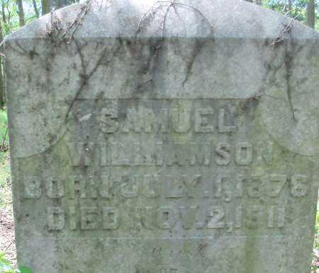 WILLIAMSON, SAMUEL - Hempstead County, Arkansas | SAMUEL WILLIAMSON - Arkansas Gravestone Photos