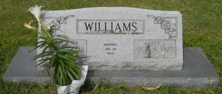 WILLIAMS, AILEEN - Hempstead County, Arkansas | AILEEN WILLIAMS - Arkansas Gravestone Photos