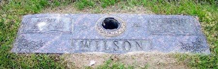WILSON, J CORNELIA - Hempstead County, Arkansas | J CORNELIA WILSON - Arkansas Gravestone Photos