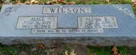 WILSON, ALPHA B - Hempstead County, Arkansas | ALPHA B WILSON - Arkansas Gravestone Photos