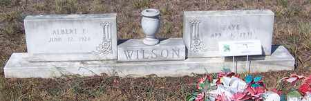 WILSON, ALBERT F - Hempstead County, Arkansas | ALBERT F WILSON - Arkansas Gravestone Photos