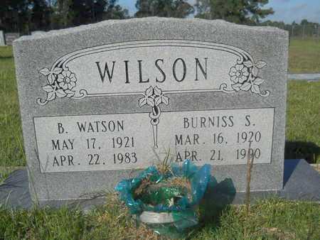 WILSON, BURNISS S - Hempstead County, Arkansas | BURNISS S WILSON - Arkansas Gravestone Photos