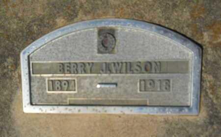 WILSON, BERRY J - Hempstead County, Arkansas | BERRY J WILSON - Arkansas Gravestone Photos