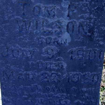 WILSON, TOM P (CLOSEUP) - Hempstead County, Arkansas | TOM P (CLOSEUP) WILSON - Arkansas Gravestone Photos