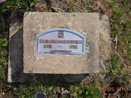 WILSON, EVELYN - Hempstead County, Arkansas   EVELYN WILSON - Arkansas Gravestone Photos