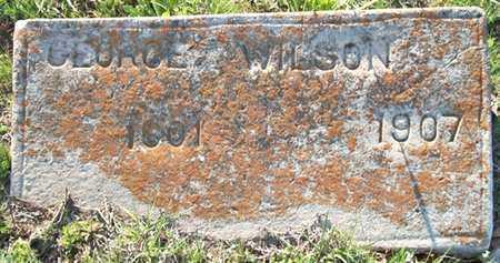 WILSON, GEORGE - Hempstead County, Arkansas | GEORGE WILSON - Arkansas Gravestone Photos
