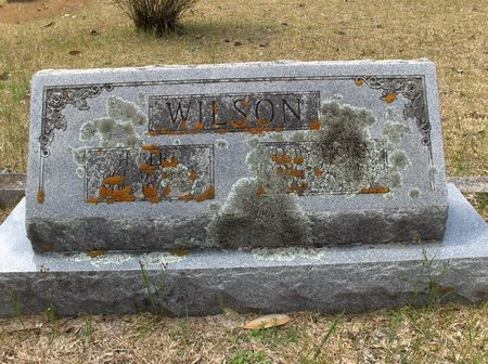 WILSON, H BERT - Hempstead County, Arkansas | H BERT WILSON - Arkansas Gravestone Photos