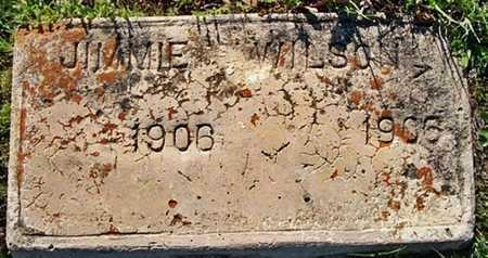 WILSON, JIMMIE - Hempstead County, Arkansas | JIMMIE WILSON - Arkansas Gravestone Photos