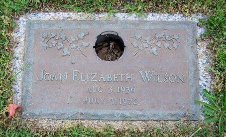 WILSON, JOAN ELIZABETH - Hempstead County, Arkansas | JOAN ELIZABETH WILSON - Arkansas Gravestone Photos