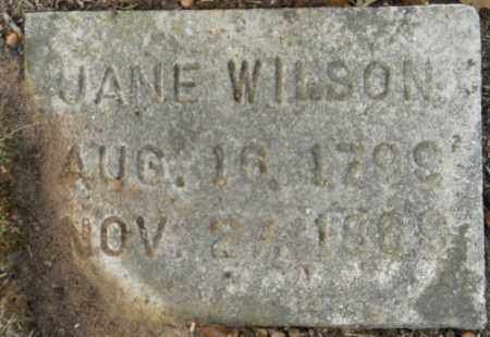 WILSON, JANE (2ND STONE) - Hempstead County, Arkansas   JANE (2ND STONE) WILSON - Arkansas Gravestone Photos