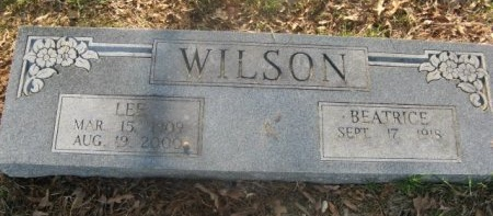 WILSON, BEATRICE - Hempstead County, Arkansas | BEATRICE WILSON - Arkansas Gravestone Photos