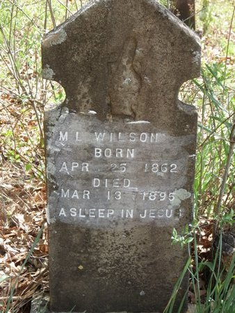 WILSON, M.L. - Hempstead County, Arkansas   M.L. WILSON - Arkansas Gravestone Photos