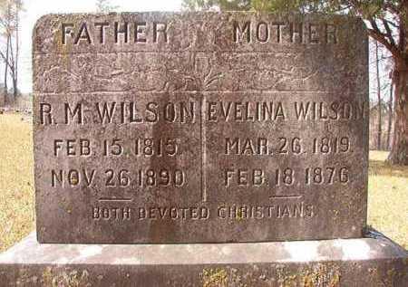 WILSON, R M - Hempstead County, Arkansas   R M WILSON - Arkansas Gravestone Photos