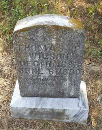WILSON, THOMAS P - Hempstead County, Arkansas | THOMAS P WILSON - Arkansas Gravestone Photos