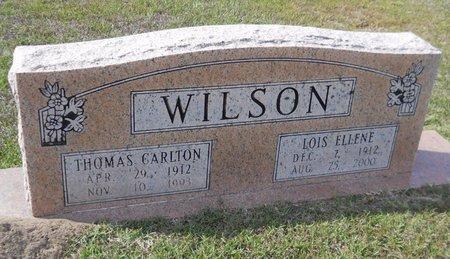 WILSON, LOIS ELLENE - Hempstead County, Arkansas | LOIS ELLENE WILSON - Arkansas Gravestone Photos