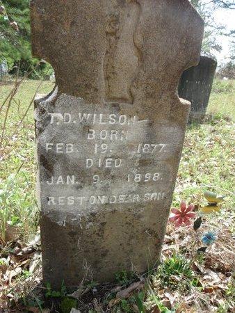 WILSON, T.D. - Hempstead County, Arkansas | T.D. WILSON - Arkansas Gravestone Photos