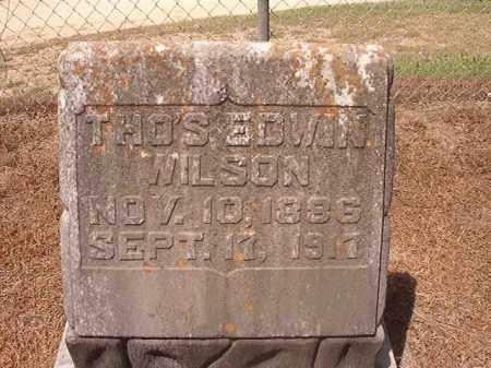 WILSON, THOMAS EDWIN - Hempstead County, Arkansas | THOMAS EDWIN WILSON - Arkansas Gravestone Photos