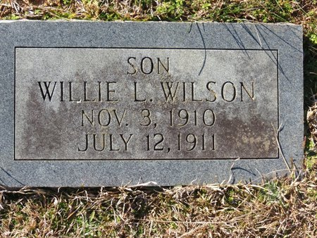 WILSON, WILLIE L. - Hempstead County, Arkansas | WILLIE L. WILSON - Arkansas Gravestone Photos