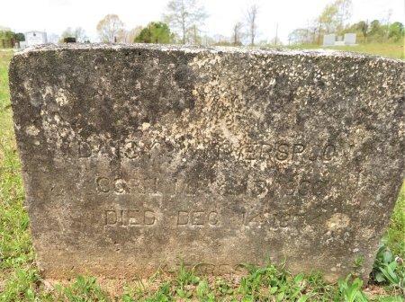 WITHERSPOON, DAISY - Hempstead County, Arkansas   DAISY WITHERSPOON - Arkansas Gravestone Photos