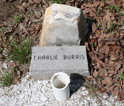 BURRIS, CHARLIE - Hot Spring County, Arkansas   CHARLIE BURRIS - Arkansas Gravestone Photos