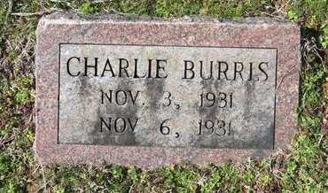 BURRIS, CHARLIE - Hot Spring County, Arkansas | CHARLIE BURRIS - Arkansas Gravestone Photos