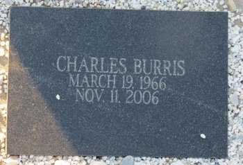 BURRIS, CHARLES - Hot Spring County, Arkansas | CHARLES BURRIS - Arkansas Gravestone Photos