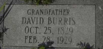 BURRIS, DAVID - Hot Spring County, Arkansas   DAVID BURRIS - Arkansas Gravestone Photos