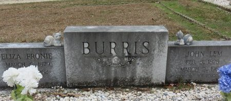 BURRIS, ELIZA FRONIE - Hot Spring County, Arkansas | ELIZA FRONIE BURRIS - Arkansas Gravestone Photos